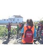 tours en bicicleta por Valencia