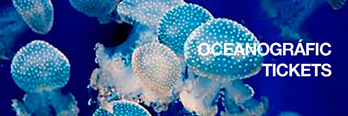 oceanografic-TICKETS-870.jpg
